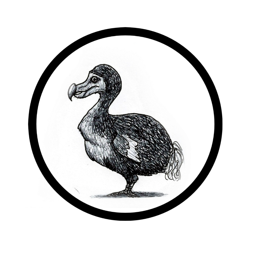 Dodo illustration by Sophia Johnson for zeroflash